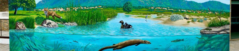 mural da biodiversidade